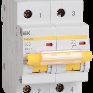 Автоматический выключатель ВА47-100 2Р 10А 10кА х-ка D IEK